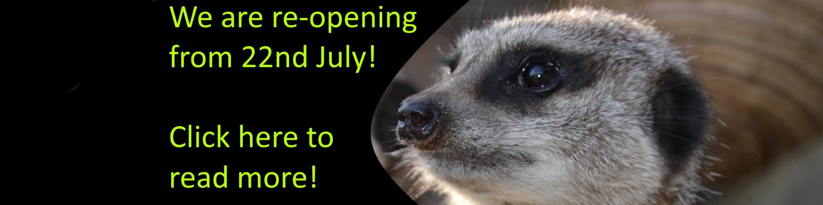 Zoo2U-Reopening